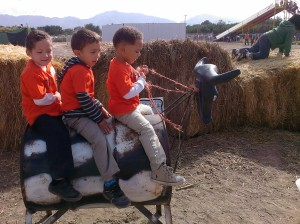 Field Trip to La Union Corn Maze