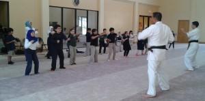 Martial arts 14